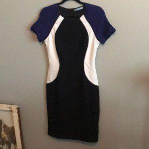 Antonio Melani Color Block dress